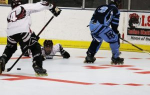 Roller Hockey Equipment – What Do You Want for any Safe Game?