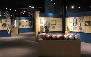 A Comprehensive Guide to the Sport's Museum